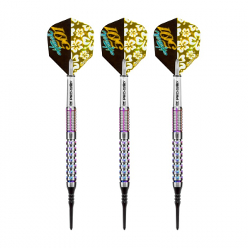 Dartset (3 Stk) Hawai 501 Wayne Mardle Generation 2